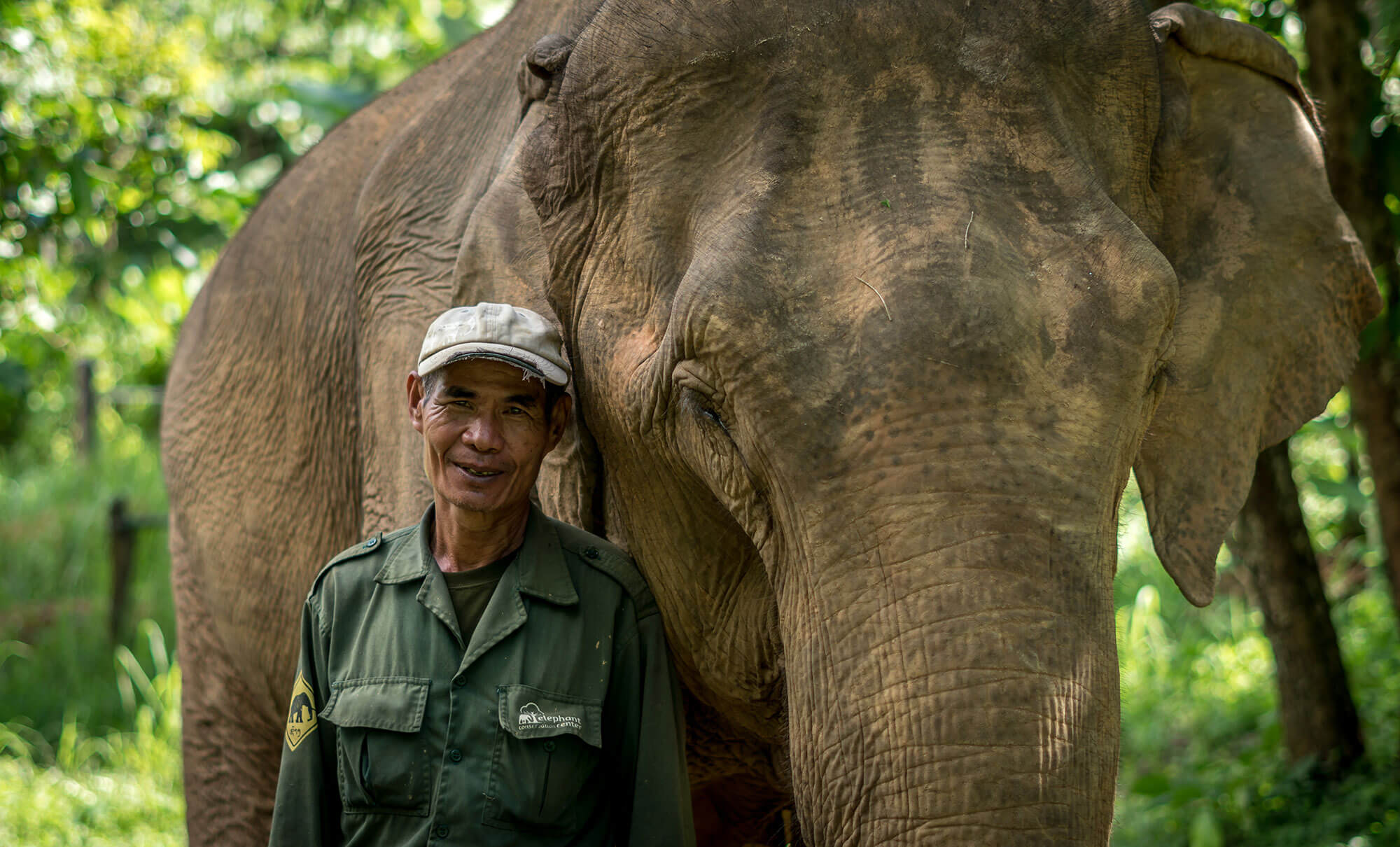 Elephant Conservation Center in Laos